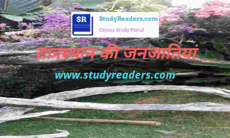 राजस्थान की जनजातियाँ